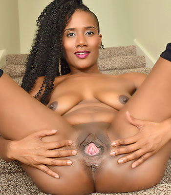 JetSet Jasmine
